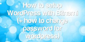 How to setup WordPress with Bitnami (+ how to change password for wordpress)